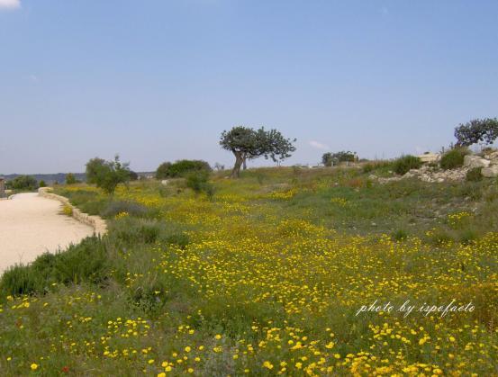 Cyprus Photo 2
