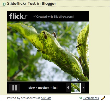 Slideflickr Blogger